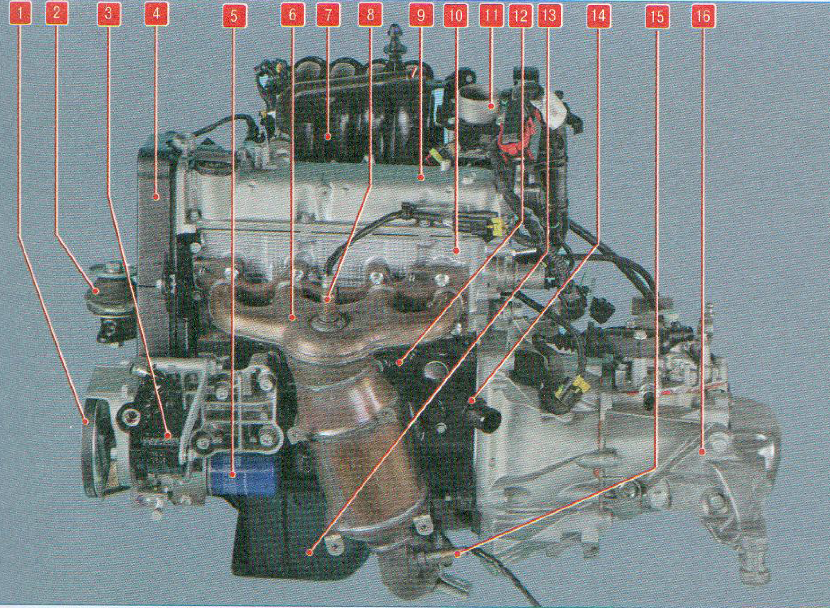 метки двигателя фиат альбеа