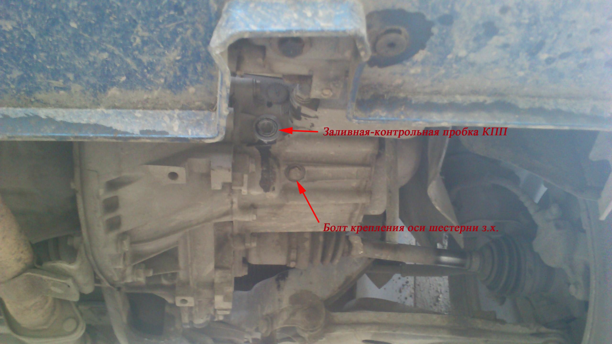 замена масла в двигателе фиат альбеа